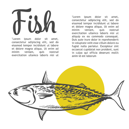 aquaculture: Fish with a yellow spot and lettering inscription, vector sketch hand-drawn illustration of a white background, sketch fresh fish, hand-drawn sea food for fish Illustration
