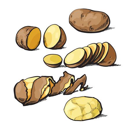 Conjunto de limpieza patatas y corte, dibujo vectorial ilustración de mano aisladas sobre fondo blanco, tubérculos de patata cortados, bombardeó las patatas, pelar y cortar en rodajas