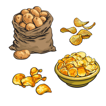 fried potato chips and fresh, vector sketch hand-drawn illustration isolated on white background set with potatoes, various fried potato chips, chips in a bag in a bowl