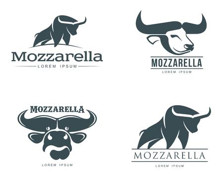 mozzarella: buffalo mozzarella cheese Stock Photo