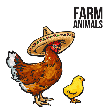poultry farm: ginger chicken with chick and sombreros, sketch hand-drawn illustration isolated on a white background. poultry farm with chicken. chicken family Mother and child. Mexican food design, sombrero