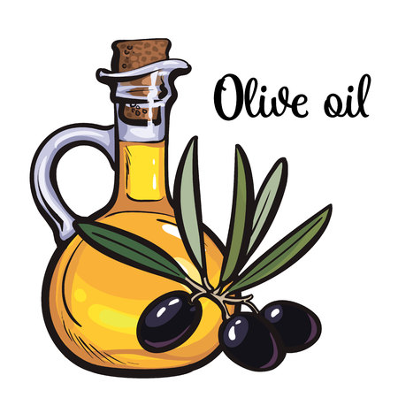olive oil bottle with black olives isolated sketch style vector illustration on white background. beautiful realistic traditional oil bottle