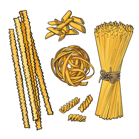 lasagna: Big collection of italian pasta sketch style vector illustration isolated on white background. Set of spiral penne spaghetti mafalda pappardelle tagliatelle pasta. Different types of italian noodles
