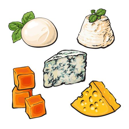 Set of different cheeses mozarella, cheddar, Roquefort, camembert and maasdam isolated sketch style illustration on white background. Various sorts of delicious hard and soft cheese Stock Photo
