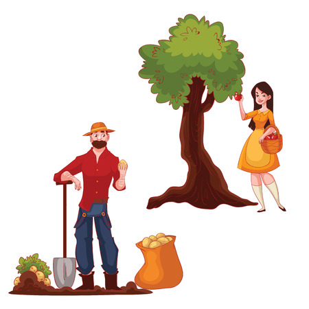 potato tree: Man harvesting potato and woman picking apples, cartoon style vector illustration isolated on white background. Potato and apple harvesting in the fall time, countryside gardening concept