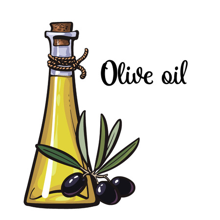 cooking oil: olive oil bottle with black olives isolated sketch style illustration on white background. beautiful realistic traditional oil bottle