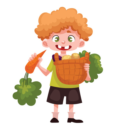 freshly: Caucasian boystanding and holding baskets of freshly harvested fruits and vegetables, cartoon style vector illustration isolated on white background. Happy childgardening concept