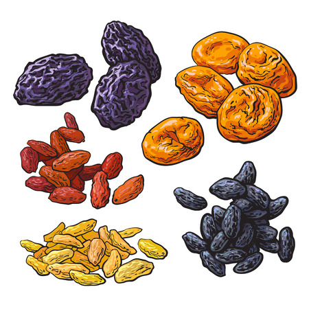 Set van gedroogde vruchten - pruimen, abrikozen en rozijnen, schets stijl vector illustratie op een witte achtergrond. Tekening van Dries pruimen, abrikozen droogt en een mix van rode, gouden en zwarte rozijnen Stock Illustratie