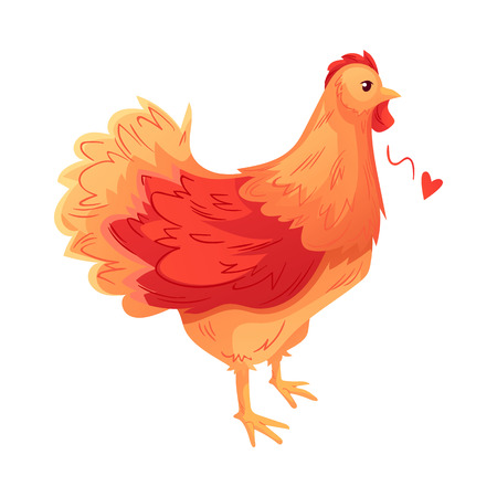 Full body of orange brown hen, cartoon vector illustration isolated on white background. Side view of colorful, cute brown hen, standing on white background Illustration