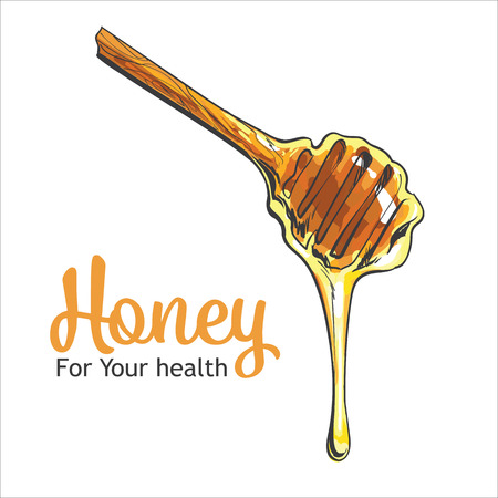 Wooden honey dipper, sketch style illustration isolated on white background. Transparent liquid golden colored honey dripping from a wooden honey dipper