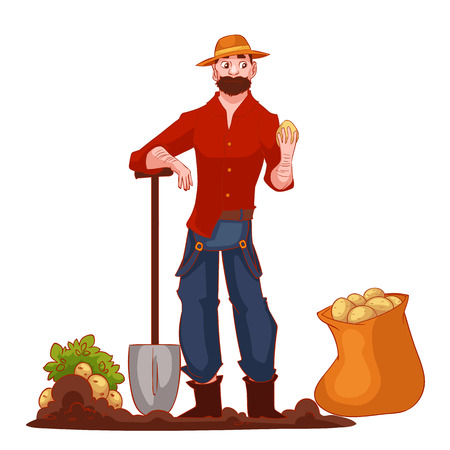 harvest time: Man harvesting potato in the field, cartoon style illustration isolated on white background. Digging potato in the fall time, countryside gardening, harvest time concept Stock Photo