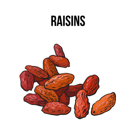 dehydrated: Pile of dried raisins, sketch style vector illustration isolated on white background. Drawing of red, golden raisins, natural sweets, vegetarian snack