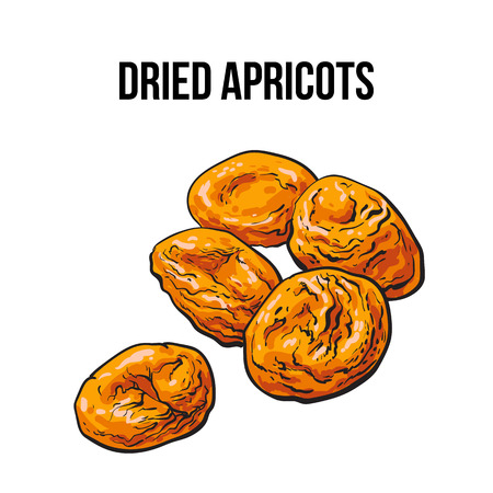 dehydrated: Pile of dried apricots, sketch style vector illustration isolated on white background. Drawing of orange sun dried apricots, natural sweets, vegetarian snack