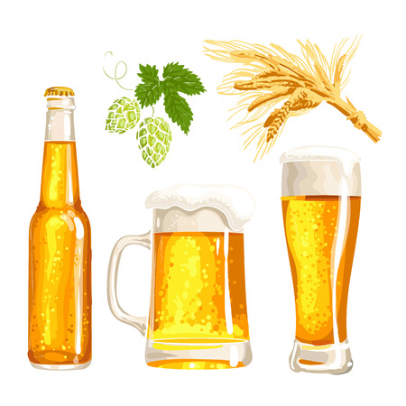 barley hop: Set of cold beer bottle, mug and glass, malt and hop, vector illustrations isolated on white background. Hand drawn beer glass, mug and bottle, branch of hops and ears of barley, Oktoberfest Illustration