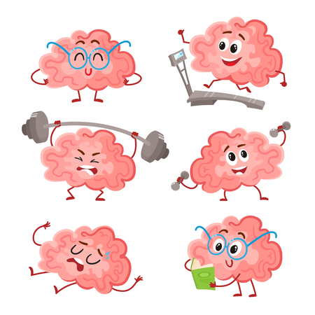 Funny brain training with barbell, dumbbells, on treadmill, reading and resting, cartoon vector illustration on white background. Set of cute brains as a metaphor of brain training and development