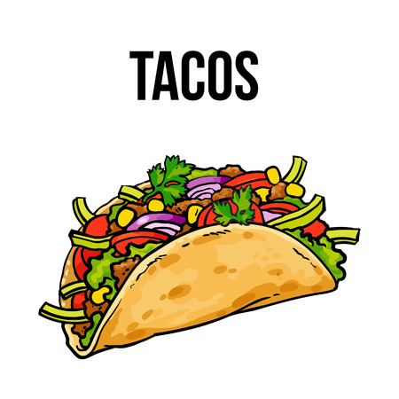 Taco, traditional Mexican food, ground meet with vegetables in folded tortilla, sketch style vector illustration on white background. Hand drawn Mexican taco - corn or wheat tortilla with meat filling Ilustração