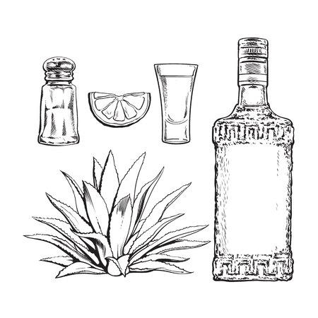 Set in bianco e nero della bottiglia di tequila, shot, macina sale, agave e fetta di lime, illustrazione vettoriale schizzo isolato su sfondo. Set di vetro tequila disegnati a mano e bottiglia, sale, lime e cactus di agave Vettoriali