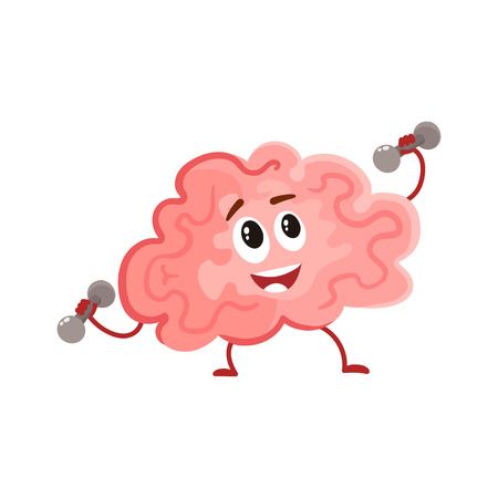 Funny smiling brain training with dumbbells, cartoon vector illustration on white background. Cute brain character lifting weights as a symbol of education, training and development
