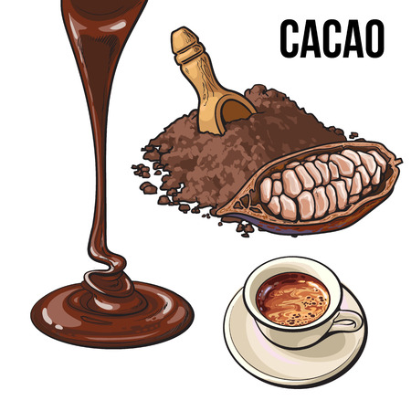Pile of cocoa powder, cacao fruit, hot chocolate cup and topping flowing down, sketch vector illustration isolated on white background. Ground cocoa powder, cacao beans, hot chocolate, chocolate flow