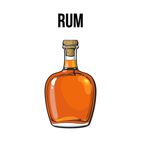 Full Jamaican rum bellied bottle, sketch style vector illustration isolated on white background. Realistic hand drawing of an unlabeled, unopened rum, brandy, whiskey bottle Ilustração