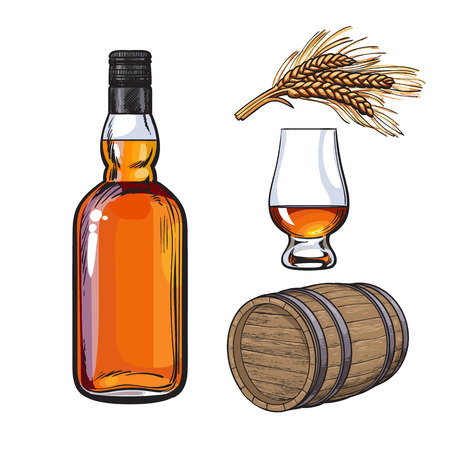 Set of hand drawn whiskey bottle, glass, barrel and malt, sketch vector illustration isolated on white background. Realistic hand drawing of an unlabeled whiskey bottle, glass, barrel and malt