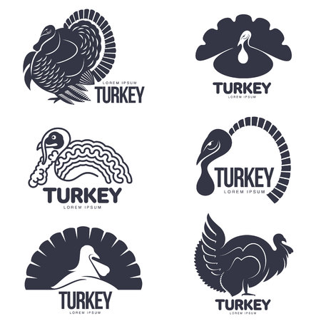 Set of turkey stylized graphic logo templates, vector illustration on white background. Various black and white turkey heads and full bodies for business, farm, poultry logo design Logo