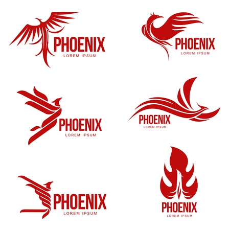 Set of stylized graphic phoenix bird templates, vector illustration isolated on white background. Collection of creative phoenix bird templates, growth, development, power concept