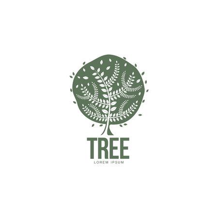 Stilisierte runden grünen Eiche Vorlage, Vektor-Illustration isoliert auf weißem Hintergrund geprägt. Eiche-Vorlage mit runden Blättern und großen Stamm, Wachstum, Entwicklung, Entstehung Konzept