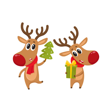 nosed: two deer holding a Christmas tree and a gift box, cartoon vector illustration isolated on white background. Christmas red nosed deer, holiday decoration element