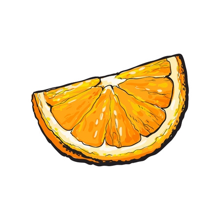 segment: Realistic colorful hand drawn segment of ripe, juicy orange, sketch style vector illustration isolated on white background. Hand drawing of quarter, piece of orange on white background Illustration