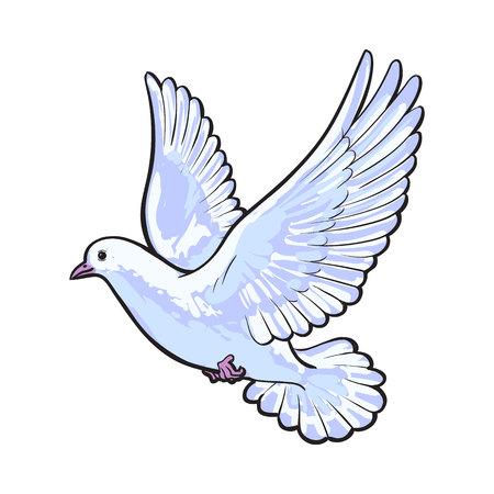 Vol libre colombe blanche, croquis style vecteur illustration isolé sur fond blanc. dessin réaliste de la main de la colombe blanche, ailes de pigeon de battement, symbole de l'amour, la romance et l'innocence, l'icône de mariage Vecteurs