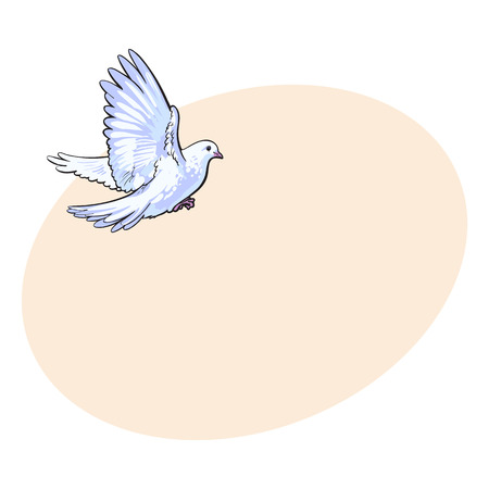Free flying white dove, sketch style vector illustration isolated on background with place for text. Realistic hand drawing of white dove, pigeon flapping wings, symbol of love, romance and innocence, marriage icon Illustration