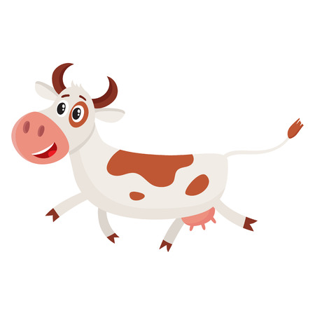 Funny brown and white spotted cow character pointing to something and talking, cartoon vector illustration isolated on white background. Funny cow character drawing attention to something