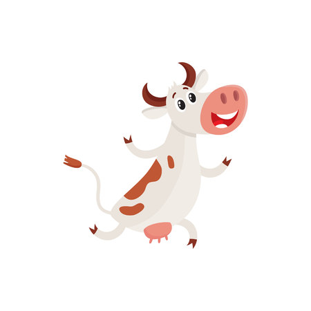 Funny brown and white spotted cow running on hind legs with fore ones up, cartoon vector illustration isolated on white background. Funny cow running, hurrying somewhere, dairy farm concept