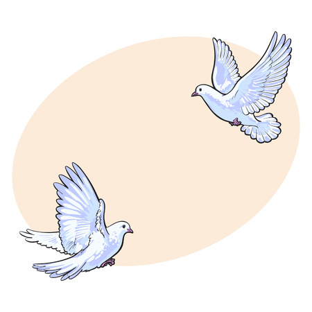 free place: Two free flying white doves, sketch vector illustration isolated on background with place for text. Realistic hand drawn couple of white doves, pigeons flapping wings, symbol of love and romance, marriage icon Illustration