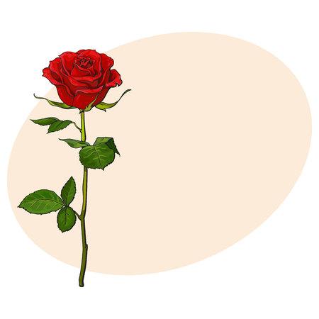 De Color Rojo Oscuro, Flor De Color Rosa Rubí Con Hojas Verdes ...