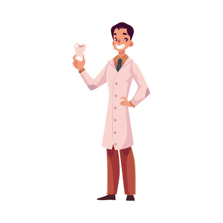 full length portrait: Smiling male dentist doctor in lab coat holding big tooth, cartoon vector illustration isolated on white background. Male dentist, healthcare professional holding big tooth model, full length portrait