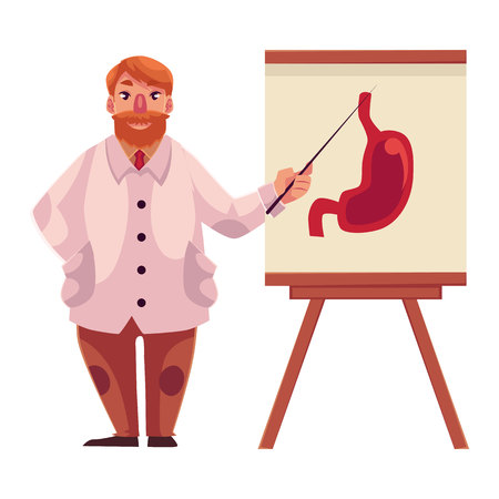 gastroenterologist: Male gastroenterologist in lab coat pointing to stomach on poster, cartoon vector illustration isolated on white background. Male gastroenterologist doctor standing next to stomach poster with pointer