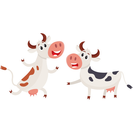 Two spotted Dutch cows talk and dancing, running, cartoon vector illustration isolated on white background. Funny cow characters for dairy farm product design Illustration