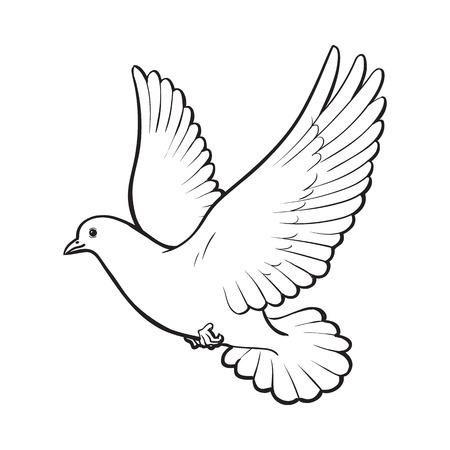 무료 비행 흰색 비둘기, 흰색 배경에 고립 된 스케치 스타일 벡터 일러스트 레이 션. 흰색 비둘기의 현실적인 손을 그리기, 비둘기 날개가 퍼덕 거리는  일러스트