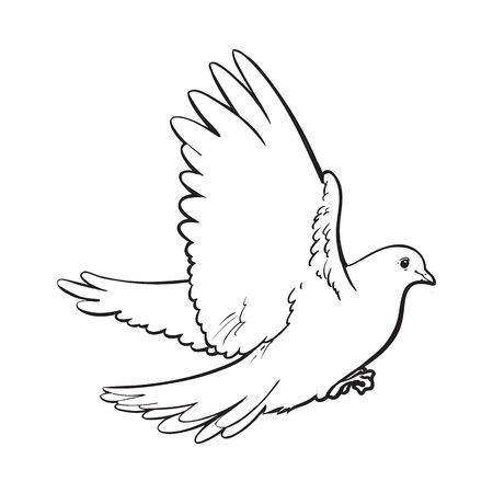 Vrij vliegende witte duif, schets stijl vector illustratie op een witte achtergrond. Realistisch de hand tekening van witte duif, duif klappen vleugels, symbool van liefde, romantiek en onschuld, huwelijk icon Stock Illustratie
