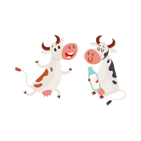Two spotted Dutch cows, one holding milk bottle, another running on two legs, cartoon vector illustration isolated on white background. Funny cow characters for dairy farm product design