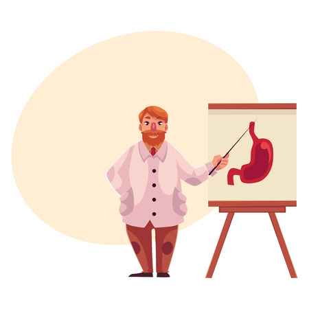 gastroenterologist: Male gastroenterologist in lab coat pointing to stomach on poster, cartoon vector on background with place for text. Male gastroenterologist doctor standing next to stomach poster with pointer Illustration