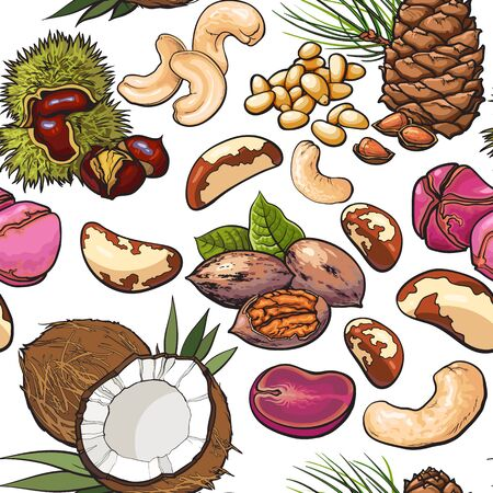 Seamless pattern of walnut, coconut, cashew, kola, pine and Brazil nuts, sketch vector illustration . Mixed nuts seamless pattern, , backdrop design