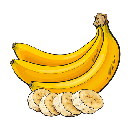 Bunch of three unopened, unpeeled ripe bananas and banana chopped into pieces, sketch style vector illustration isolated . Realistic hand drawing of ripe banana bunch and slices