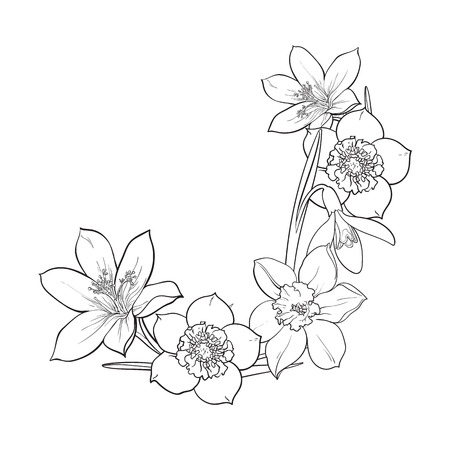 Half frame of spring flowers, decoration element, sketch illustration isolated on white background. Hand drawn realistic early spring flowers as half round frame, banner, label design Illustration