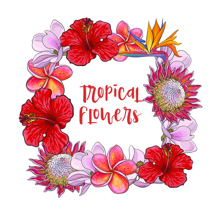 Square frame of tropical flowers with place for text, sketch illustration isolated on white background. Hand drawn realistic exotic, tropical flowers as square frame, banner, label design