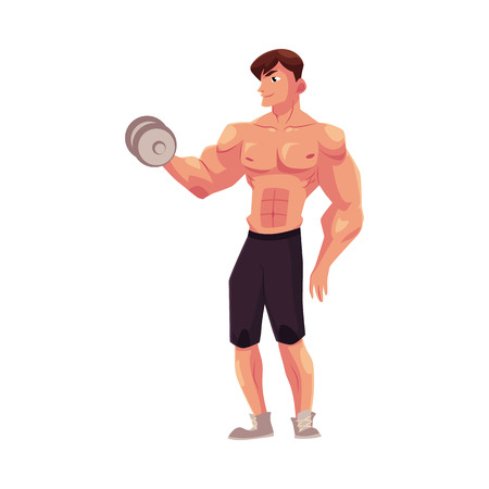 male bodybuilder: Young shirtless man, male bodybuilder, weightlifter doing bicep workout, training arms with dumbbell, cartoon illustration isolated on white background. Male bodybuilder doing bicep workout Illustration