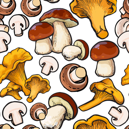 Seamless pattern of chanterelle, champignon, porcini edible mushrooms, sketch illustration on white background. Button mushroom, chanterelle seamless pattern, background, backdrop design