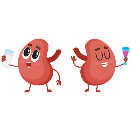 Pareja de personajes de riñón humanos sanos y divertidos bebiendo leche y vino, ilustración vectorial de dibujos animados aislado sobre fondo blanco. Pareja, sano, humano, riñón, caracteres, bebidas